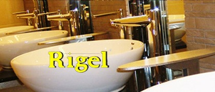 Rigel provides solutions for world-class hygienic environments!